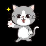 cat1_t1_dl